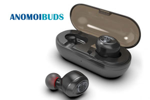 Anomoibuds Wireless Bluetooth Earphone